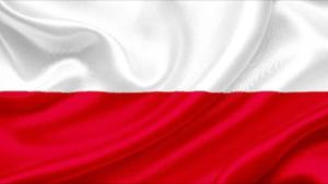 Polish Sarasota Bradenton